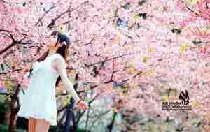小清新气质美女文文樱花树下写真