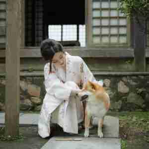 超漂亮的日本和服美女