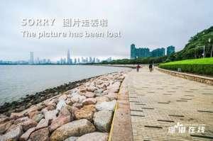 王菲被拍出现在香港购物 身材苗条神情似少女 疑来港见男友谢霆锋